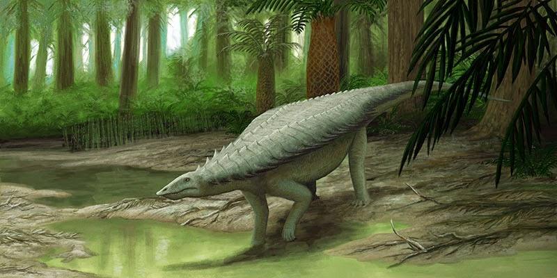 Resultado de imagem para aetosaur