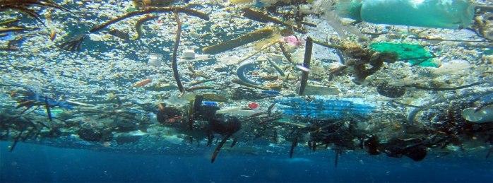 Ocean-Plastic-Yuck.jpg