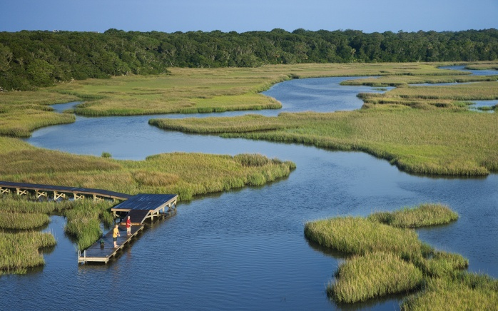 ecologicalservices_pd2_coastalwetlands.jpg